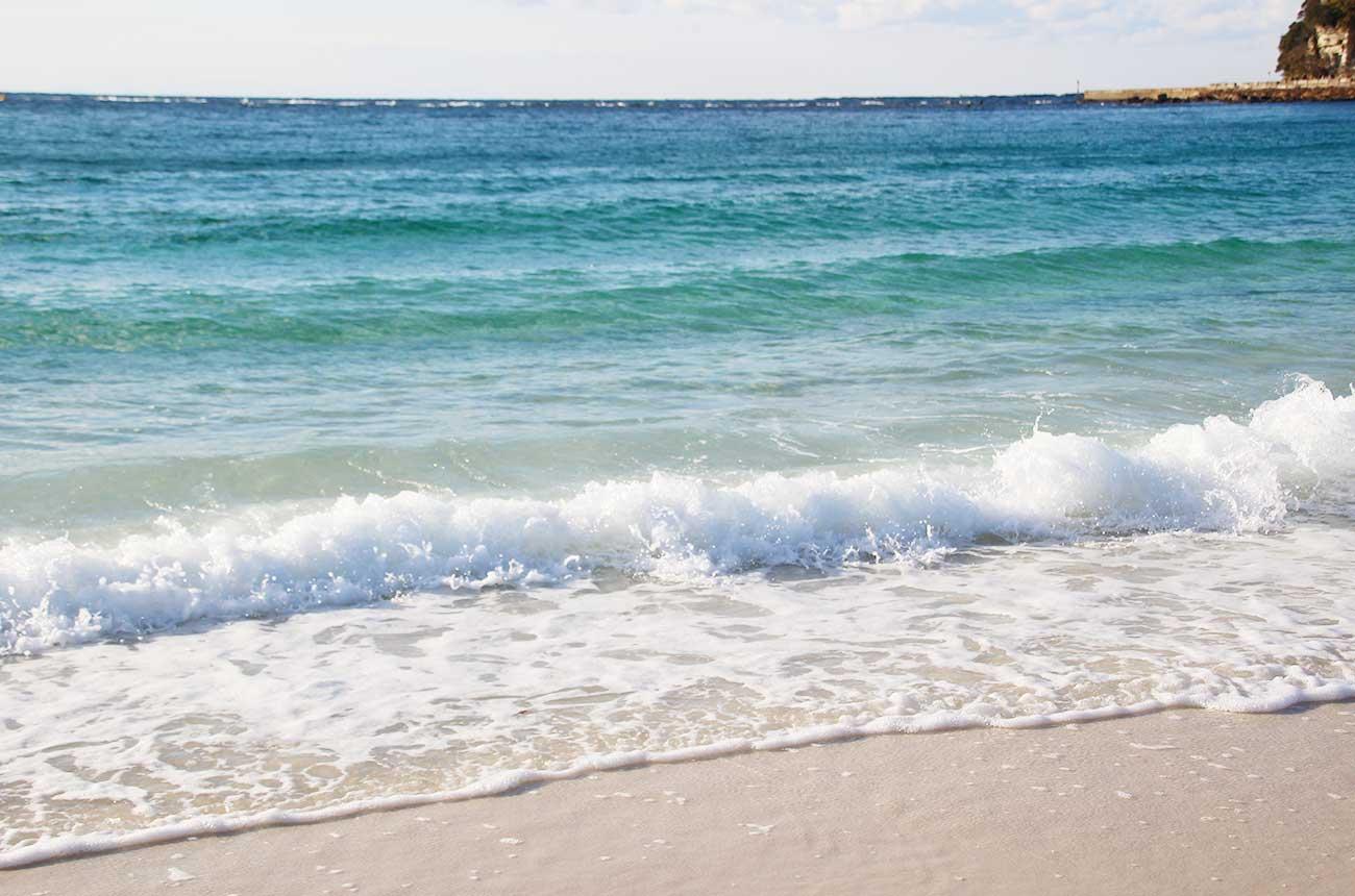 海が鮮やかです