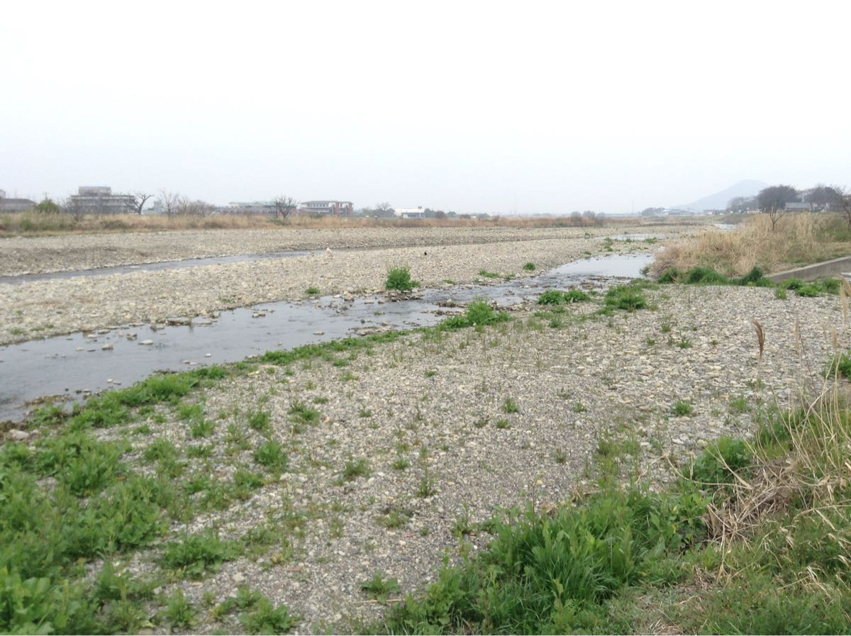 自然の川に繋がってます