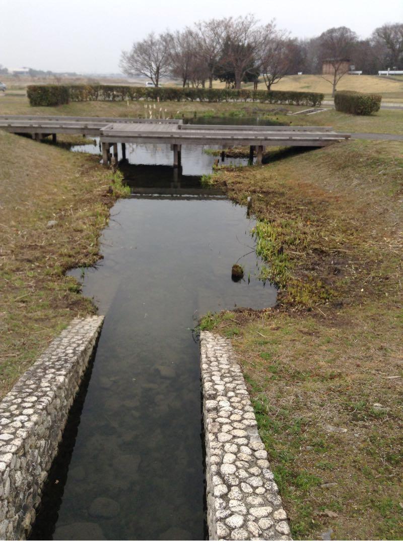 もう一個の池にも続く