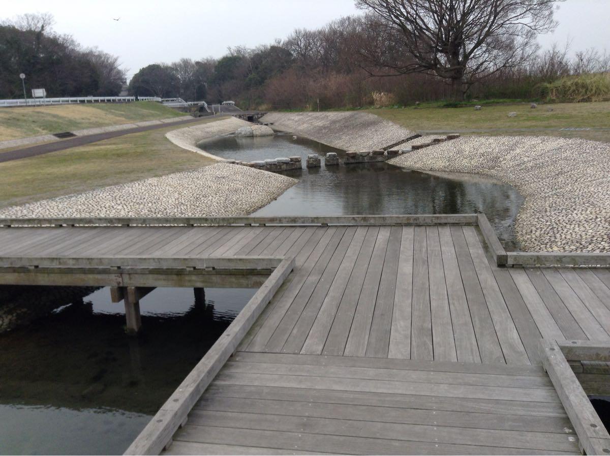 川から池に