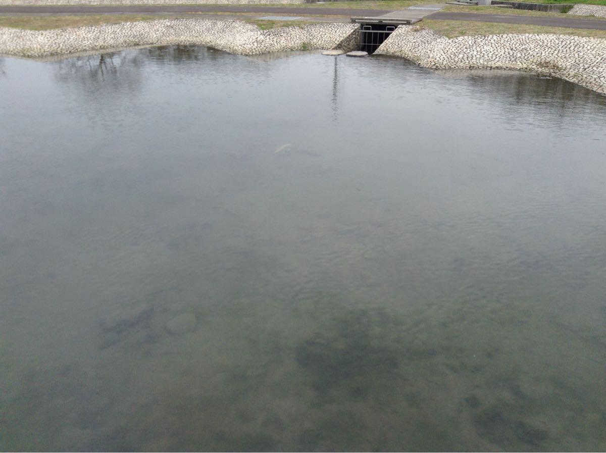 池がありまくり