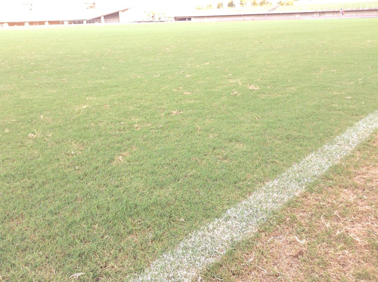 サッカーのフィールドは立ち入り禁止