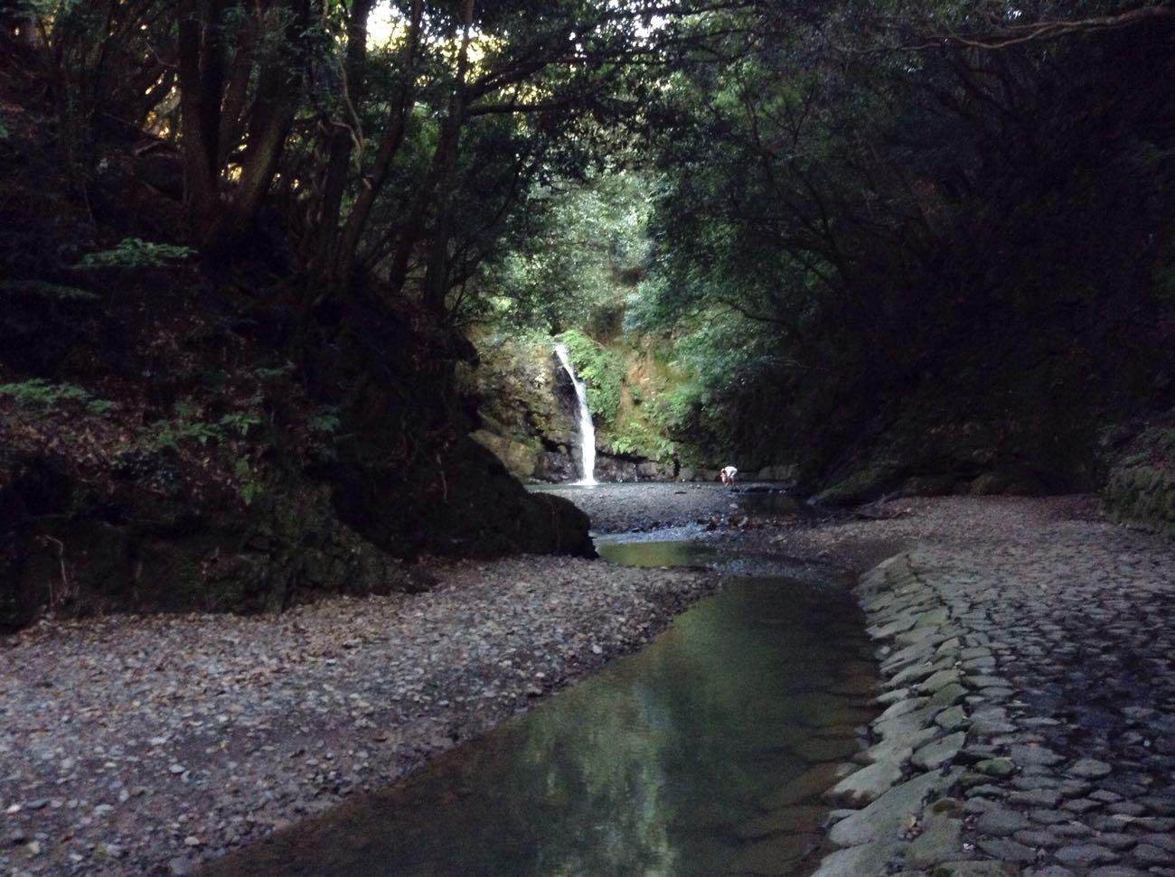 振り返って滝を見ました