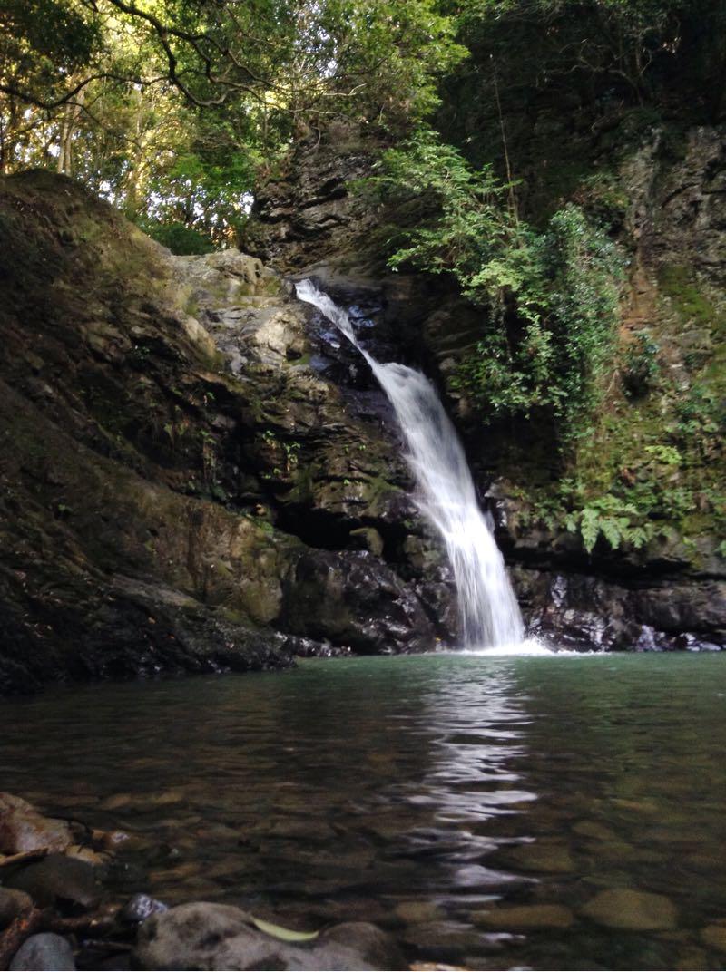 滝の美しさときたら……