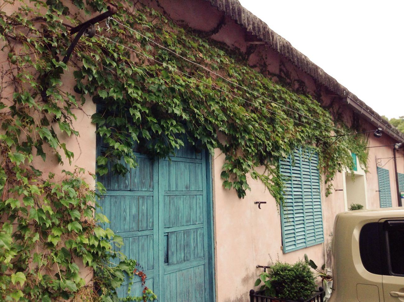 ツタと壁とドアの絶妙なハーモニー