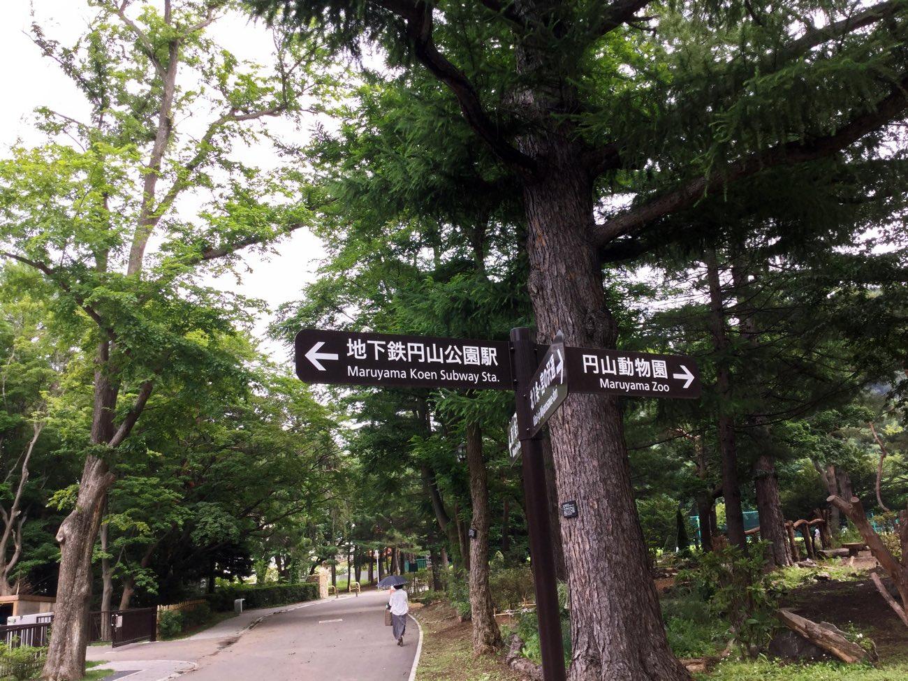 円山動物園と北海道神宮があるよ