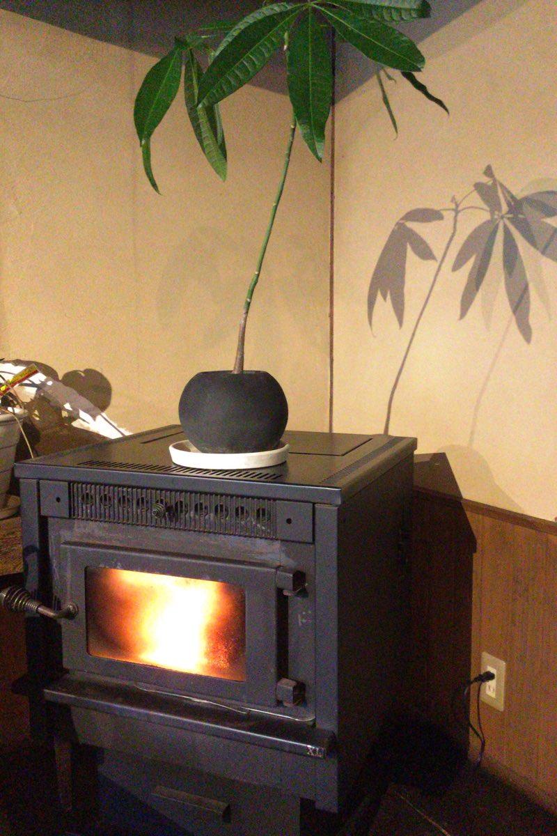 寒い日には暖炉も