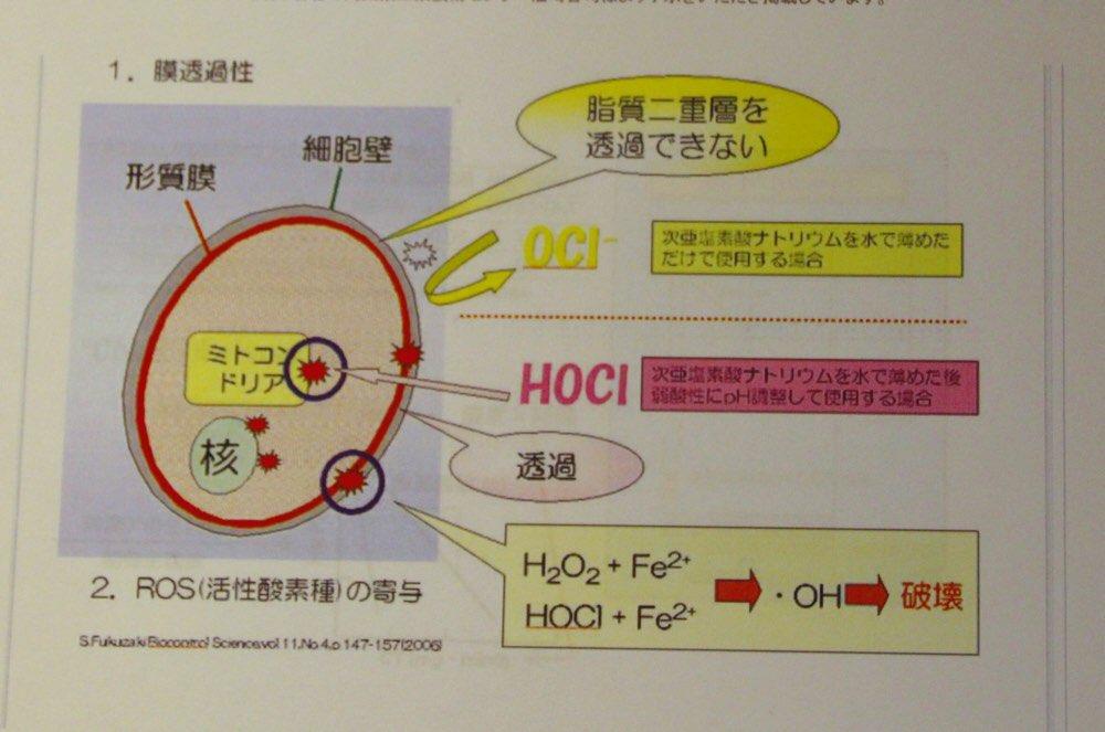 次亜塩素酸の図