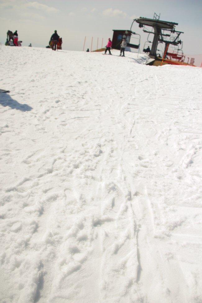雪質はちょっとパサパサ