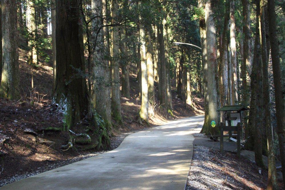 雲辺寺への道は整備されている