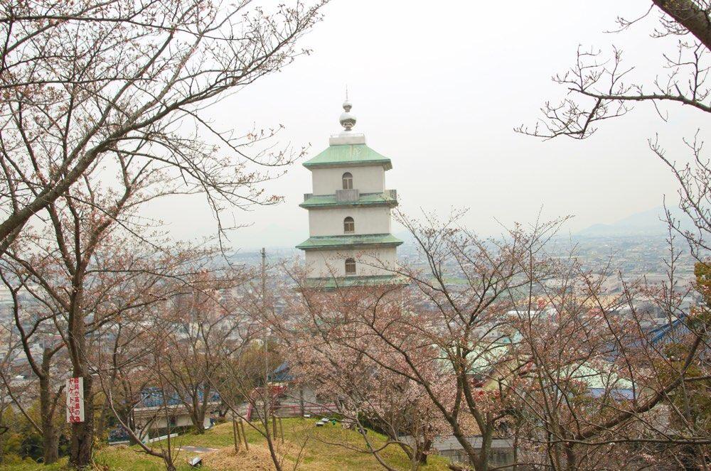 金剛禅総本山少林寺の塔も見える