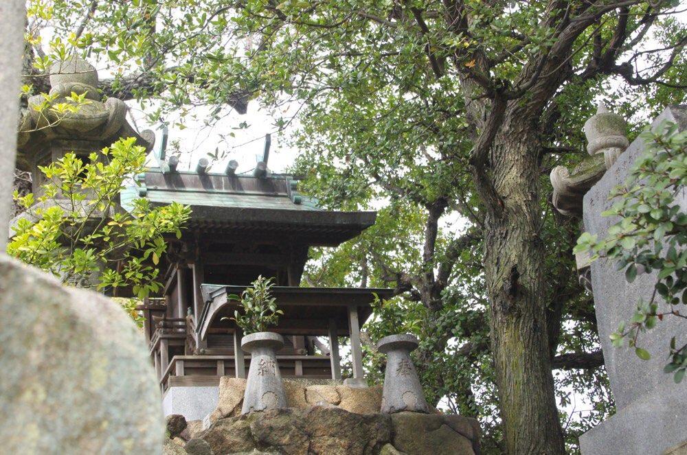桃陵神社は小さいよ
