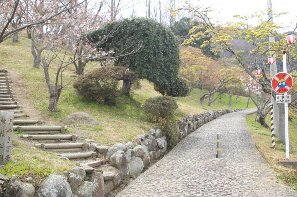 桃陵公園の頂上に行く道