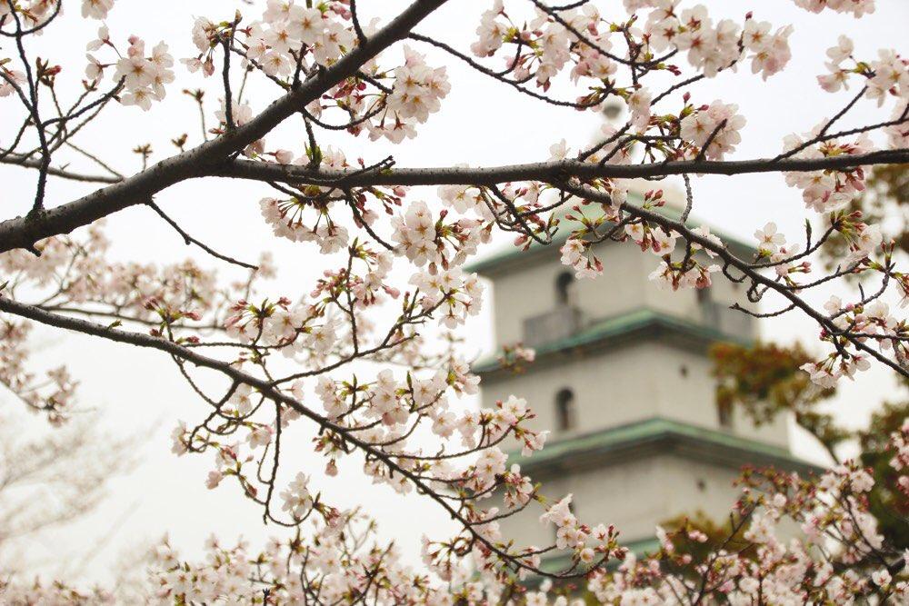 金剛禅総本山少林寺の真ん前にコンコース広場がある