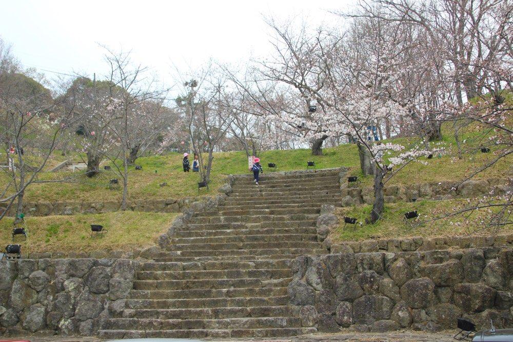 今は桜がいっぱい植えられているコンコースホール