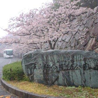 [香川]「飯山総合運動公園」の花見は桜と桃を同時に楽しめる!