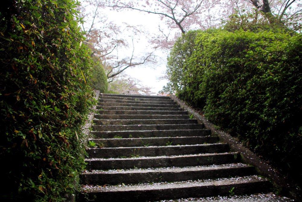階段が右手に