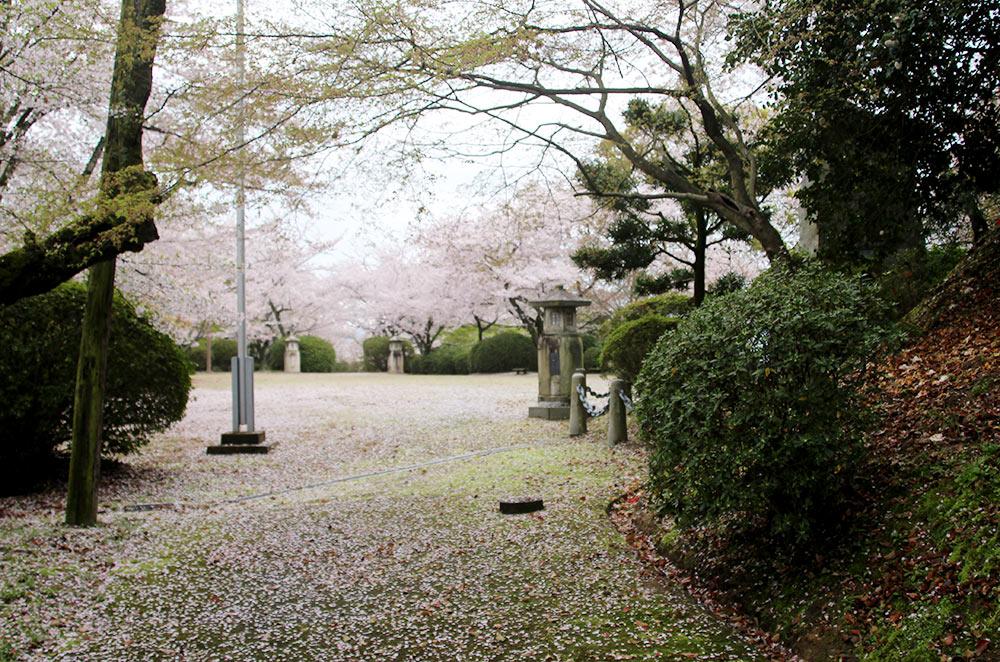 出口にも桜が
