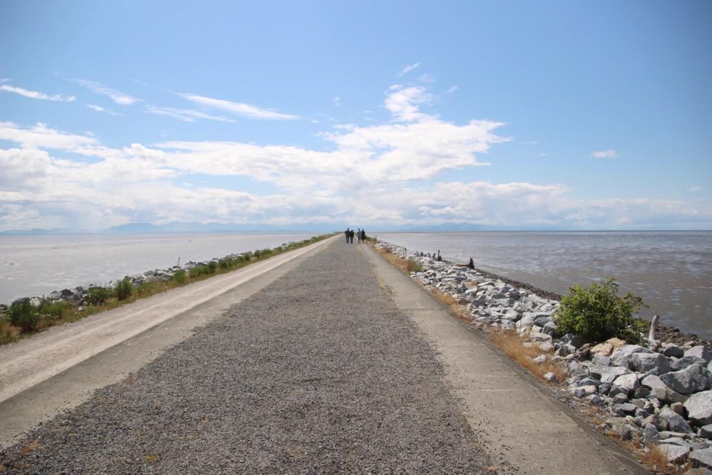 Iona Beach沿いの道