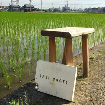 tabi-bagel-336