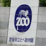 tobe-zoo-01-300