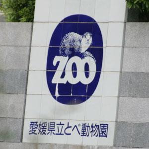 とべ動物園は入園する前でも子どもが大喜び! 工夫された動物の足あとを見て