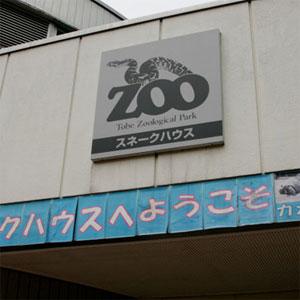 とべ動物園のスネークハウスとバードパーク! 白いニシキヘビは必見ですぞ!