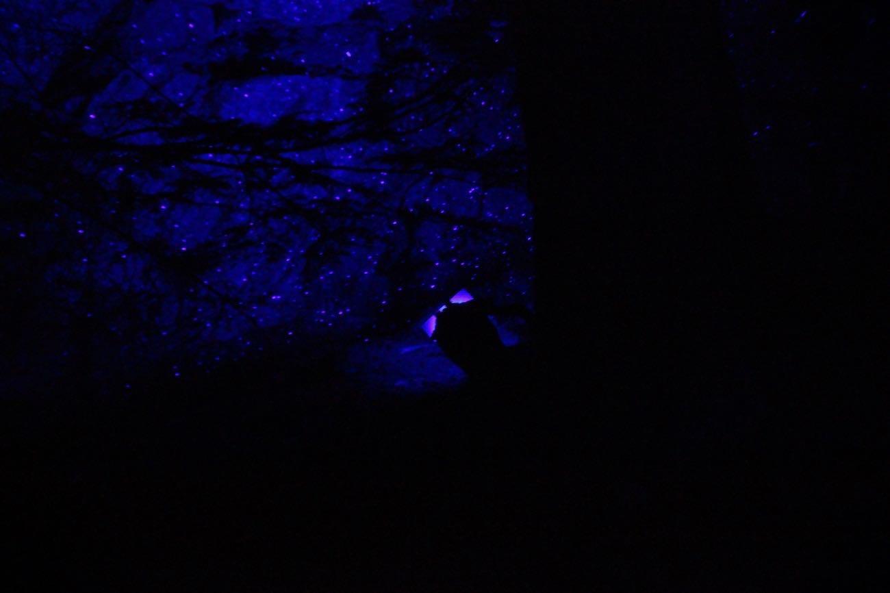 岩が青紫に光る