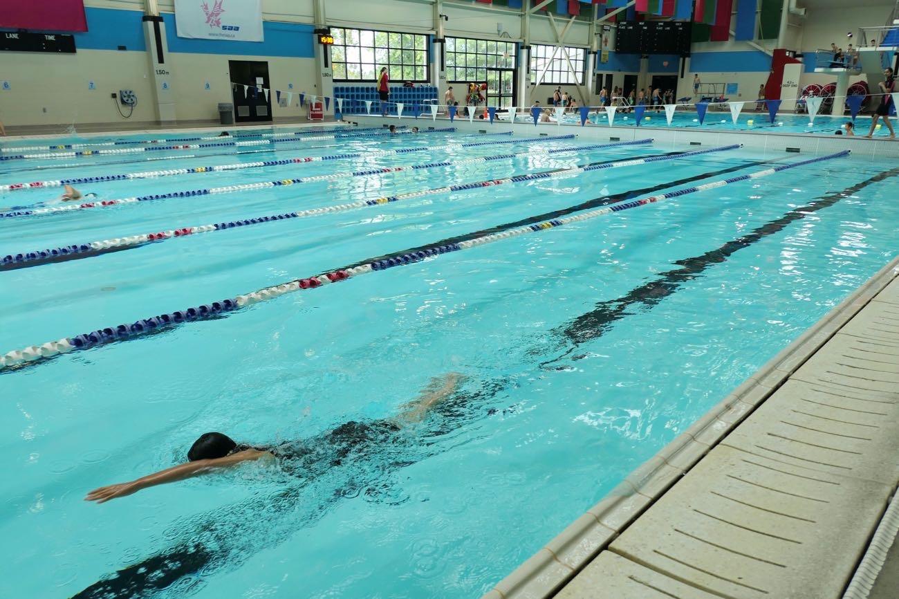 ガチで泳ぐ人向けのプール